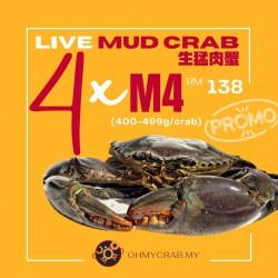 Live Mud Crab Promo M4 (400-490g) x 4 crab