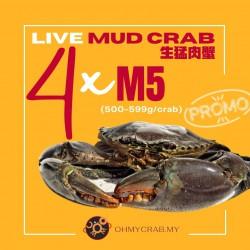 Live Mud Crab Promo M5 (500-590g) x 4 crab