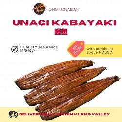Unagi Kabayaki