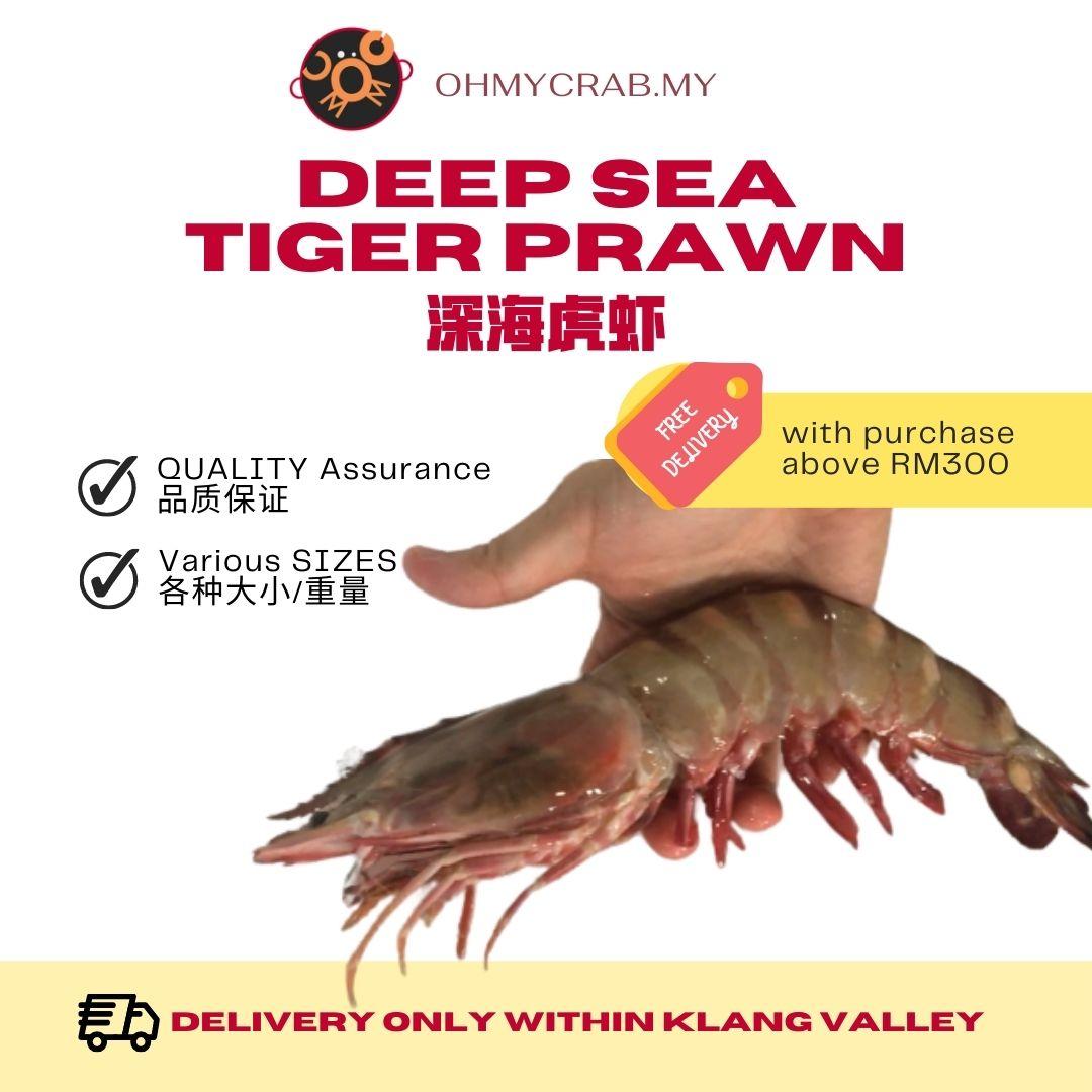 Deepsea Tiger Prawn 6-8prawns