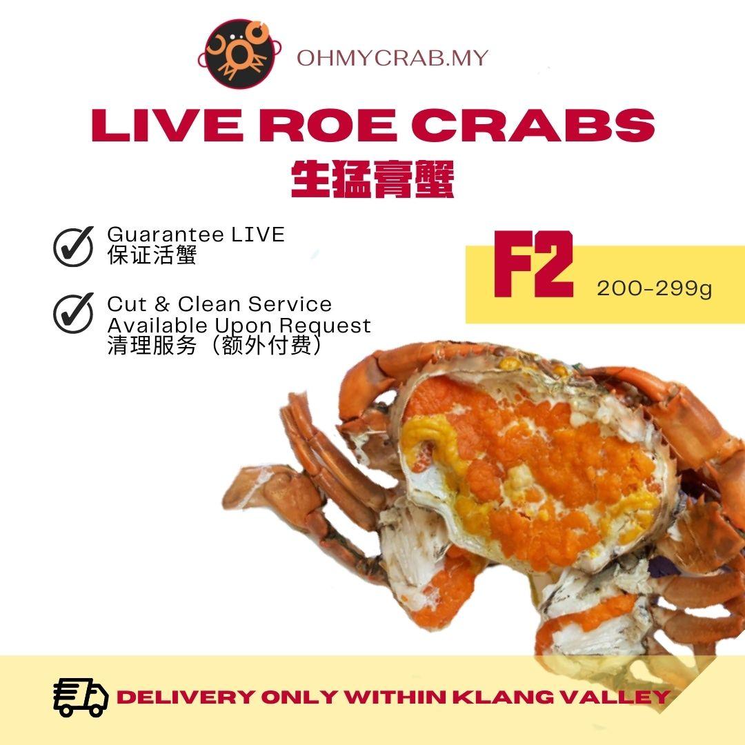 Live Roe Crab F2 (200-300g)